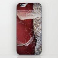 Smooth Halloween  iPhone & iPod Skin