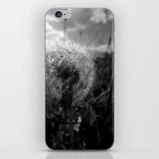 Soft Dandy iPhone & iPod Skin