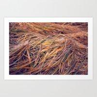 Autumn Grass Art Print