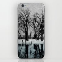 Winter In The Park iPhone & iPod Skin