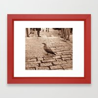 Lonely Bird Framed Art Print
