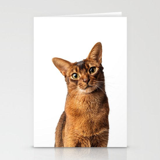 Abyssinian Eyes Stationery Card