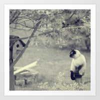Sitting, Waiting, Wishin… Art Print