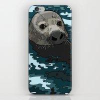 Grey Seal iPhone & iPod Skin