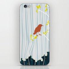 bird in birch iPhone & iPod Skin