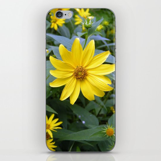 Woodland Sunflowers iPhone & iPod Skin