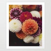 Bouquet of Dahlias Art Print