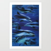 Dolphin bookmark Art Print