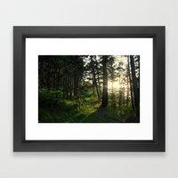 Entering Narnia Framed Art Print