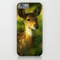 Indian Deer iPhone 6 Slim Case