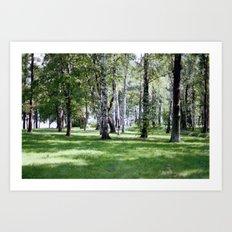 Peterhof Woods Art Print