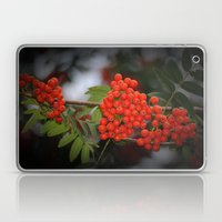 Rote Beeren Laptop & iPad Skin