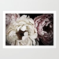 Tea Stained Peonies Art Print