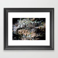 Cobwebs On Rocks After R… Framed Art Print