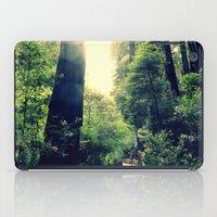 Muir Woods Path 2 iPad Case