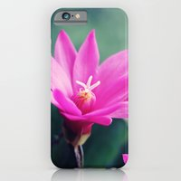 iPhone & iPod Case featuring Easter Cactus by Melissa Contreras