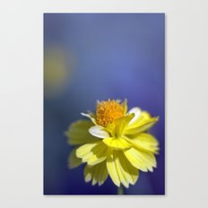 Yellow solitaire 2 038 Canvas Print