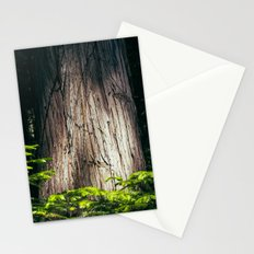 Cedar Stationery Cards