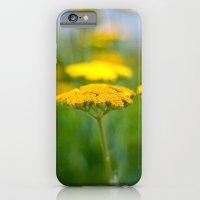 iPhone & iPod Case featuring Yarrow III by Katie Kirkland Photography