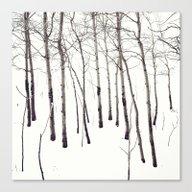 Walk In The White Lightn… Canvas Print