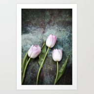 Art Print featuring Pink Tulips by Maria Heyens
