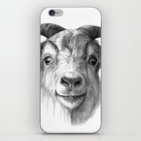 Curious Goat G124 iPhone & iPod Skin