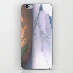 Antarctica iPhone & iPod Skin