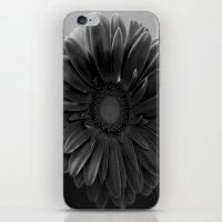 Grey Room iPhone & iPod Skin