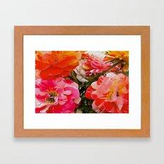 Overblown Framed Art Print