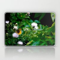 Old Style Butterfly  Laptop & iPad Skin