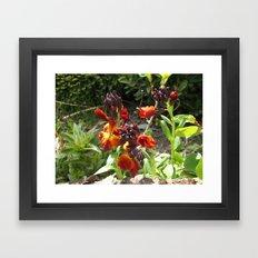 Wild Fire Framed Art Print