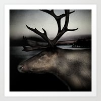 Tom Feiler Caribou Art Print