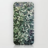 leaves iPhone 6 Slim Case
