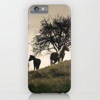 Caballos iPhone 6 Slim Case