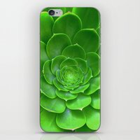 Green Within iPhone & iPod Skin