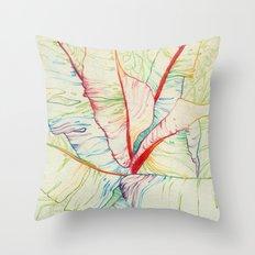 A lo color Throw Pillow
