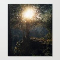 A Special Kind Of Night Canvas Print