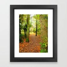 Leaves Lead The Way Framed Art Print