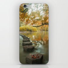 Box Hill Stepping Stones iPhone & iPod Skin