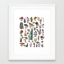 Framed Art Print - Cactus and Mushrooms NEW!!! - franciscomffonseca
