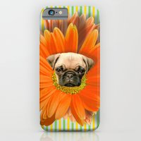 iPhone & iPod Case featuring Pistil Pug by C...