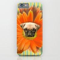 Pistil Pug iPhone 6 Slim Case