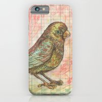 iPhone & iPod Case featuring Bird on a Budget by fluffco