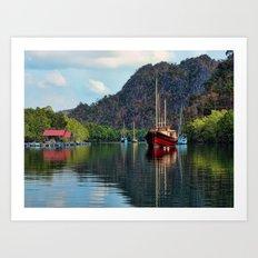 Langkawi Mangroves Art Print