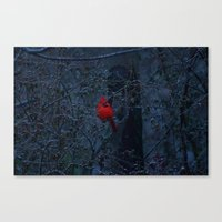 Color In The Dreary Canvas Print