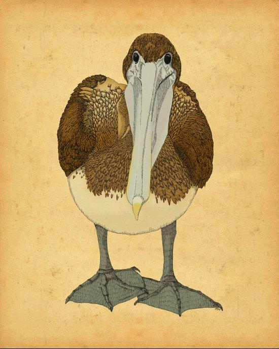 Ploffskin Pluffskin Pelican Jee Art Print