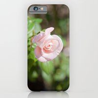 Little Pink Rose iPhone 6 Slim Case