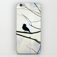 Sing Like You Mean It! iPhone & iPod Skin