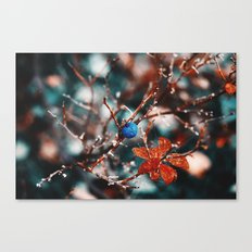 Blueberry Fall Canvas Print