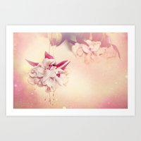 Summer Lingers Art Print